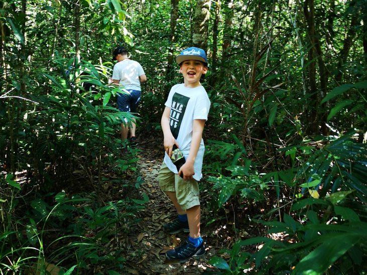Jungle hike in Cambodia